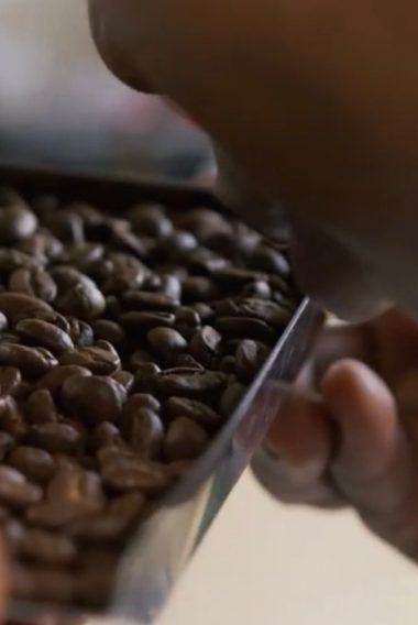 L'histoire <br/>du <br/>Café